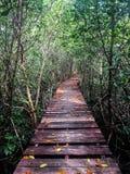 Παλαιά ξύλινη γέφυρα στοκ εικόνες με δικαίωμα ελεύθερης χρήσης