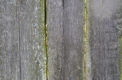 Παλαιά ξύλινη κάθετη εικόνα της σύστασης σανίδων κάπρων στοκ φωτογραφία με δικαίωμα ελεύθερης χρήσης