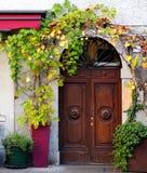 Παλαιά ξύλινη πόρτα με εγκαταστάσεις αμπέλων γύρω από το Στοκ φωτογραφίες με δικαίωμα ελεύθερης χρήσης