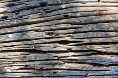 Παλαιά ξύλινη σύσταση Στοκ φωτογραφία με δικαίωμα ελεύθερης χρήσης