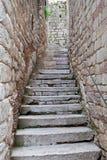 παλαιά πέτρα σκαλοπατιών Στοκ εικόνα με δικαίωμα ελεύθερης χρήσης