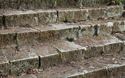 παλαιά πέτρα σκαλών πάρκων Στοκ εικόνες με δικαίωμα ελεύθερης χρήσης