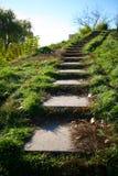 παλαιά πέτρα σκαλών πάρκων Στοκ φωτογραφία με δικαίωμα ελεύθερης χρήσης