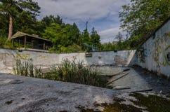παλαιά πισίνα με τον κάλαμο στοκ εικόνες