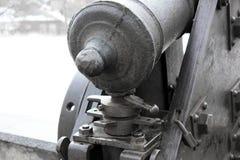 Παλαιά πυροβόλα στο πάρκο στοκ εικόνες