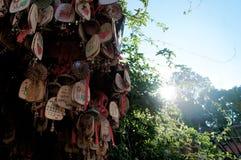Παλαιά πόλη πρωινού Lijiang σε Yunnan, Κίνα στοκ φωτογραφία