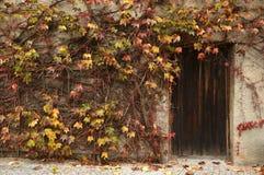 παλαιά πόρτα με τα κόκκινα και κίτρινα φύλλα κατά τη διάρκεια της εποχής φθινοπώρου στο αβαείο Novacella κοντά στο Μπολτζάνο, Ιτα στοκ εικόνες