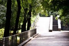 Παλαιά σκάλα stoun στο παλαιό πάρκο Στοκ Φωτογραφίες