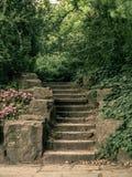 Παλαιά σκαλοπάτια πετρών στο πάρκο στοκ φωτογραφία