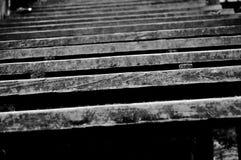 παλαιά σκαλοπάτια Στοκ εικόνα με δικαίωμα ελεύθερης χρήσης