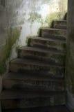 παλαιά σκαλοπάτια Στοκ Εικόνα