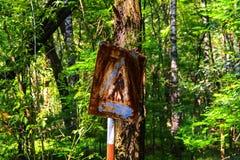 Παλαιά σκουριασμένα σημάδια της προσοχής στο δέντρο Νεκρή στρατιωτική μονάδα Στοκ εικόνες με δικαίωμα ελεύθερης χρήσης