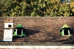 Παλαιά στέγη με τα αετώματα Στοκ φωτογραφία με δικαίωμα ελεύθερης χρήσης