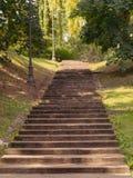 Παλαιά συγκεκριμένα σκαλοπάτια στο πάρκο στοκ φωτογραφία
