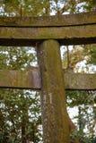 Παλαιά συγκεκριμένη πύλη Shinto Torii που καλύπτεται στο βρύο, Nobeoka, Ιαπωνία Στοκ Εικόνες