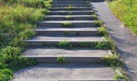 Παλαιά συγκεκριμένη σκάλα Στοκ Εικόνες