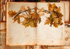 Παλαιά σύσταση εγγράφου λεπτομερώς και φθινοπωρινός κλάδος Στοκ Φωτογραφίες