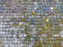 Παλαιά σύσταση τουβλότοιχος υποβάθρου Τρύγος Στοκ εικόνα με δικαίωμα ελεύθερης χρήσης