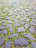 Παλαιά mossy τούβλα και πεζοδρόμιο πετρών στοκ εικόνα με δικαίωμα ελεύθερης χρήσης