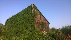 Παλαιοί ξύλινοι σιταποθήκη και μπλε ουρανός στοκ φωτογραφίες