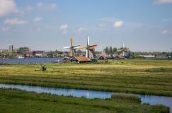 Παλαιοί ολλανδικοί ανεμόμυλοι και ποταμός στο ιστορικό χωριό Μύλοι της Ολλανδίας κατά την πανοραμική άποψη τομέων Αγροτικό τοπίο  στοκ εικόνα με δικαίωμα ελεύθερης χρήσης