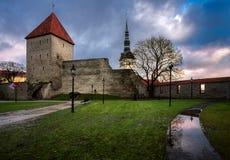 παλαιοί πύργοι του Ταλίν Εσθονία στοκ εικόνες