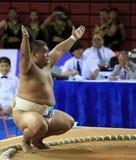 παλαιστής sumo Στοκ Εικόνες
