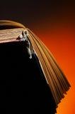παλαιός βιβλίων που ανοίγουν Στοκ Φωτογραφίες