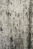 Παλαιός γκρίζος κατασκευασμένος τοίχος Στοκ Εικόνα