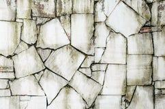 Παλαιός γκρίζος τοίχος πετρών με το πράσινο υπόβαθρο σύστασης βρύου Στοκ Εικόνα