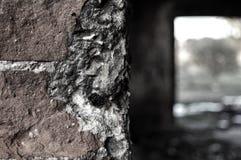 Παλαιός γκρίζος τοίχος στοκ εικόνες