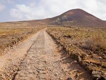 Παλαιός δρόμος τούβλου μέσω της ερήμου Στοκ Εικόνες