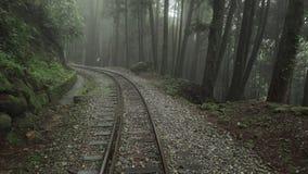 Παλαιός εγκαταλειμμένος σιδηρόδρομος στο φυσικό δάσος περιοχής Alishan με την υδρονέφωση, την ελαφριά ομίχλη και την ομίχλη στην  φιλμ μικρού μήκους