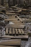 Παλαιός θαλάσσιος περίπατος στο έλος στοκ εικόνες με δικαίωμα ελεύθερης χρήσης