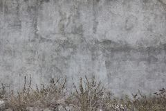 Παλαιός και ξεχασμένος τοίχος του Μεξικού στοκ φωτογραφία