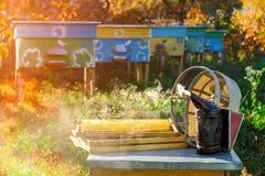 Παλαιός καπνιστής μελισσών Εργαλείο μελισσοκομίας Φθινόπωρο σε ένα μελισσουργείο aphrodisiac Στοκ εικόνες με δικαίωμα ελεύθερης χρήσης