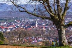 Παλαιός μίσχος δέντρων με την άποψη σε Nuertingen Στοκ Εικόνες
