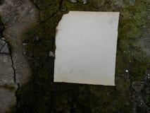 Παλαιός μμένος τρύγος εγγράφου Στοκ Εικόνα