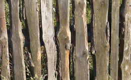 παλαιός ξύλινος φραγών Στοκ εικόνα με δικαίωμα ελεύθερης χρήσης