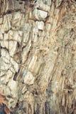 παλαιός πολύ ξύλινος ανασκόπησης στρέψτε μαλακό Στοκ φωτογραφίες με δικαίωμα ελεύθερης χρήσης