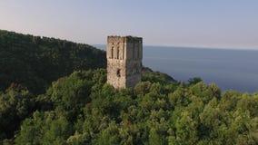 Παλαιός πύργος που αυξάνεται από το πράσινο δάσος απόθεμα βίντεο