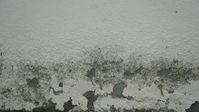 Παλαιός ραγισμένος τοίχος Στοκ εικόνα με δικαίωμα ελεύθερης χρήσης