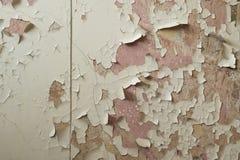 Παλαιός ρόδινος τοίχος με το ραγισμένο χρώμα Στοκ Εικόνα