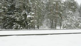 Παλαιός σιδηρόδρομος στο χειμερινό δάσος φιλμ μικρού μήκους