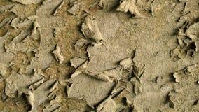 Παλαιός σκουριασμένος τοίχος Το ξηρό χρώμα σαπίζει και αφήνει τον τοίχο Παν τοίχος υποβάθρου φιλμ μικρού μήκους