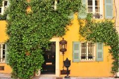 Παλαιός τοίχος σπιτιών με την πόρτα, τα Windows και τα φυτά Στοκ Φωτογραφίες