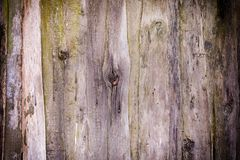 παλαιός τοίχος χαρτονιών Σύσταση των ξύλινων επιτροπών Υπόβαθρο με το σύντομο χρονογράφημα Στοκ φωτογραφία με δικαίωμα ελεύθερης χρήσης