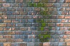 Παλαιός τουβλότοιχος Στοκ φωτογραφία με δικαίωμα ελεύθερης χρήσης