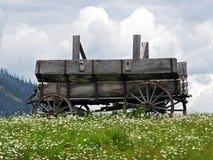 Παλαιό βαγόνι εμπορευμάτων και άσπρες μαργαρίτες Στοκ εικόνες με δικαίωμα ελεύθερης χρήσης
