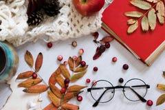 Παλαιό βιβλίο, έξυπνο τηλέφωνο, φύλλα φθινοπώρου στο ξύλινο υπόβαθρο Φθινόπωρο έννοιας Τοπ όψη διάστημα αντιγράφων Θερμός εκλεκτή Στοκ φωτογραφία με δικαίωμα ελεύθερης χρήσης